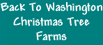 Washington State Christmas Tree Farms